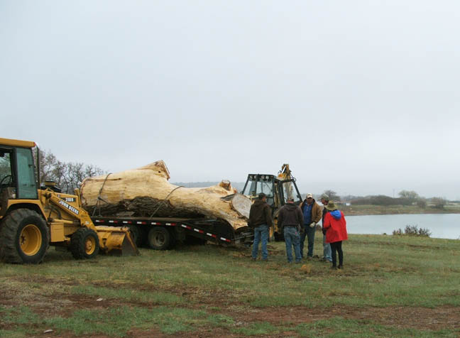 log loaded onto trailer