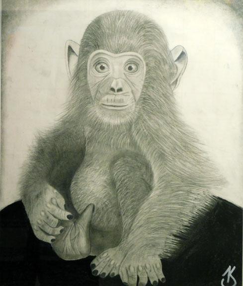 Maury by Kaiya Swenson