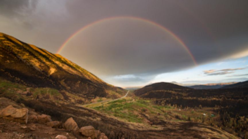 Chris May Rainbow