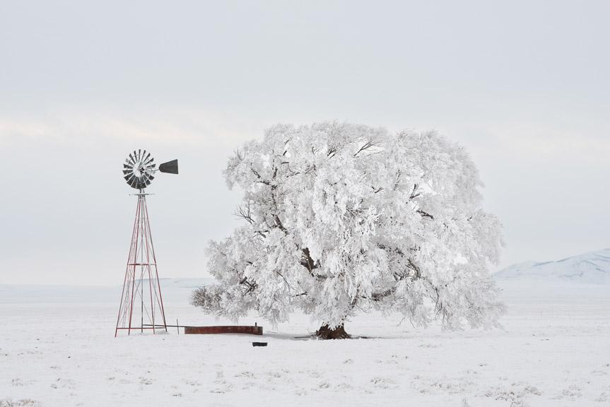Chris May Ranch Snow