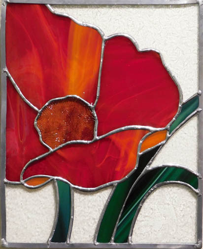 Sherry Taylor-Morning Poppy